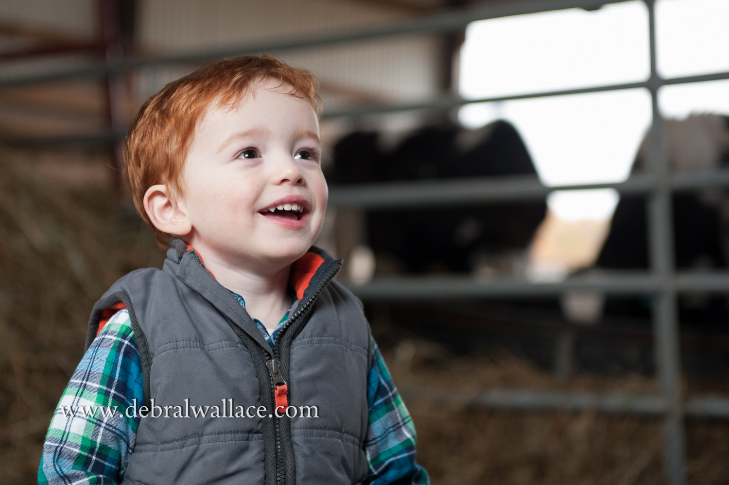 victor family farm portrait photography--2