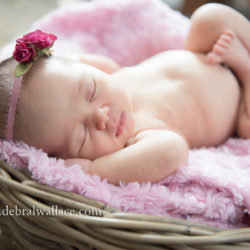 Fairport NY Newborn and family photography ~ Kyle and Julie