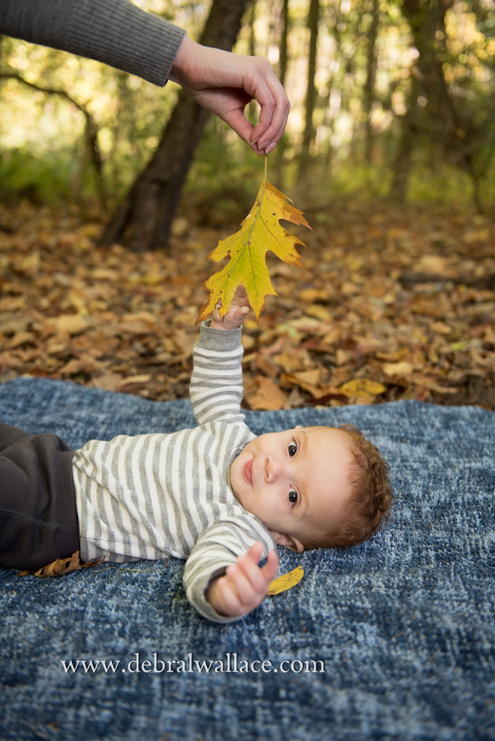 corbetts-glen-family-and-baby-photography-0135