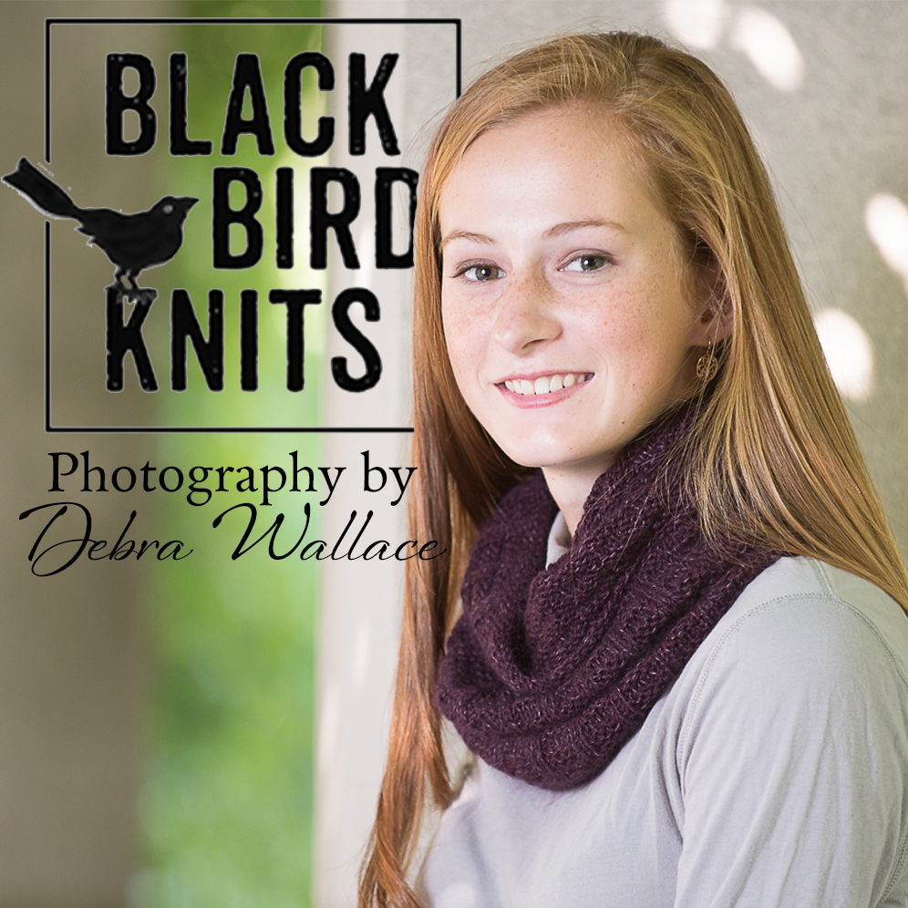 black bird knits