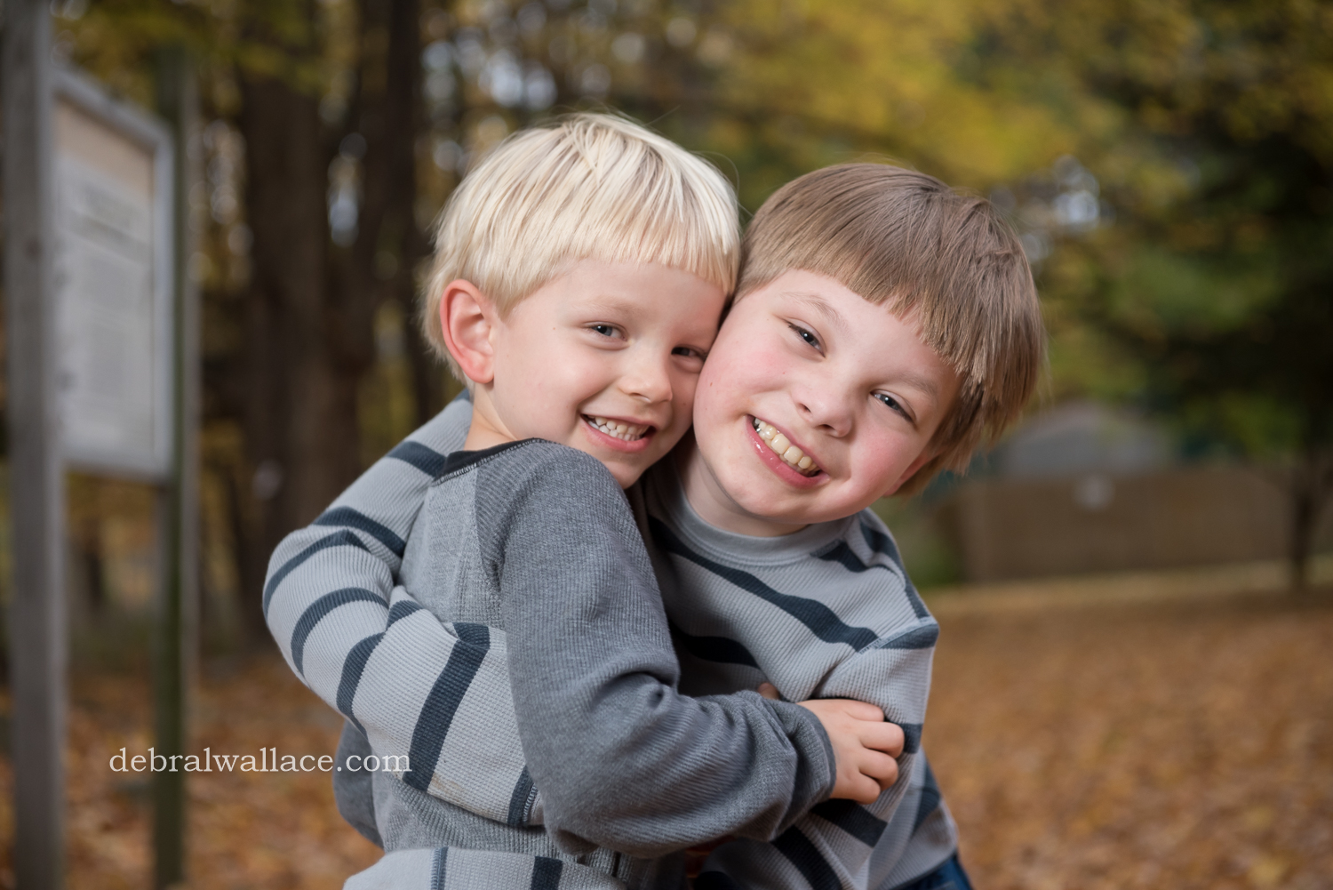 mendon-ponds-family-photography-hollow-log-leaves-brothers-1366