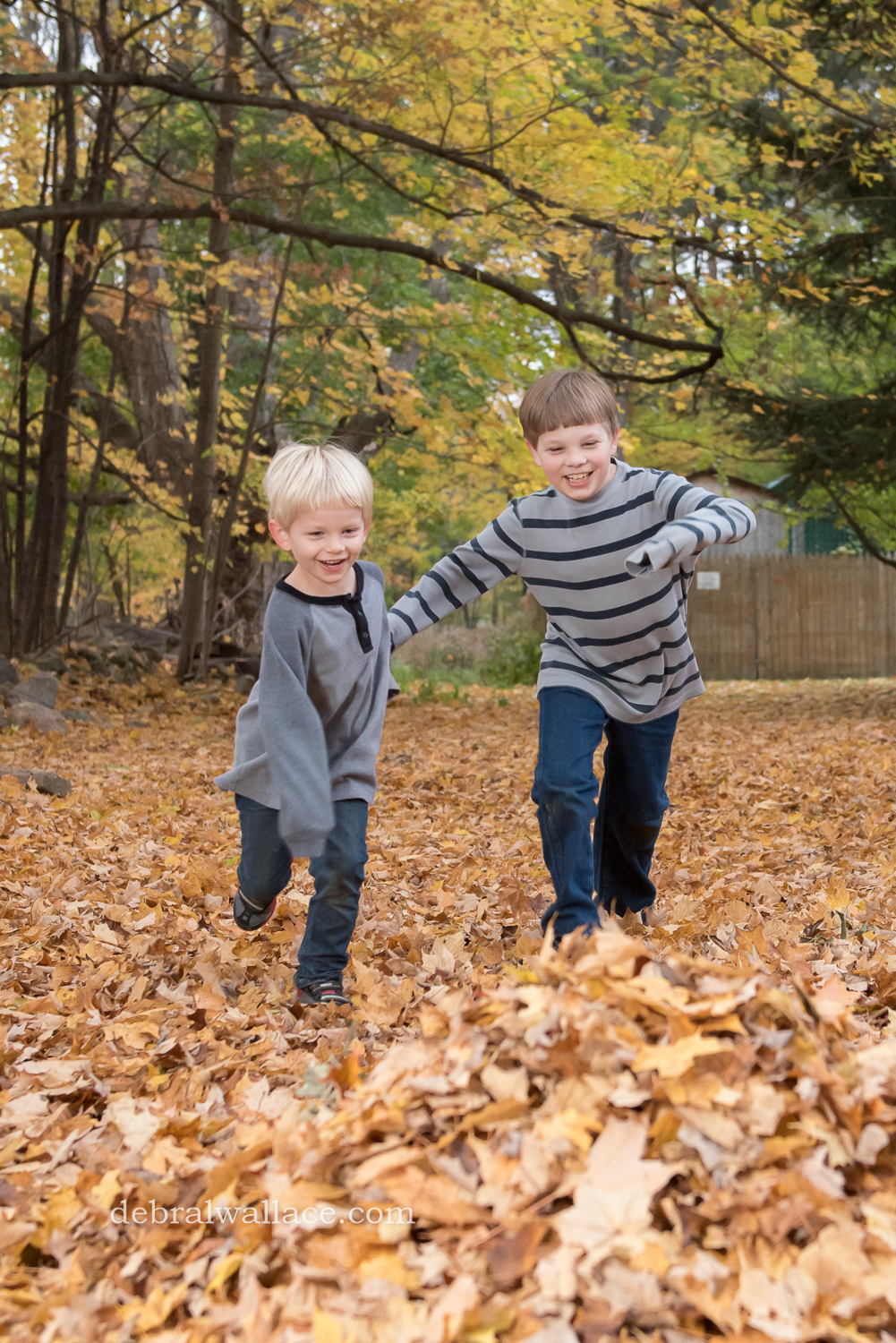 mendon-ponds-family-photography-hollow-log-leaves-brothers-1369