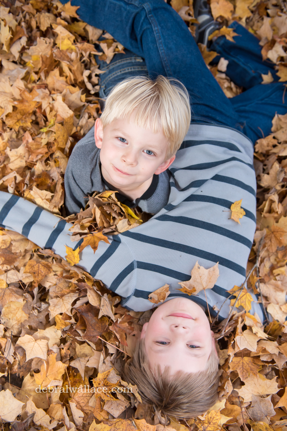mendon-ponds-family-photography-hollow-log-leaves-brothers-1378