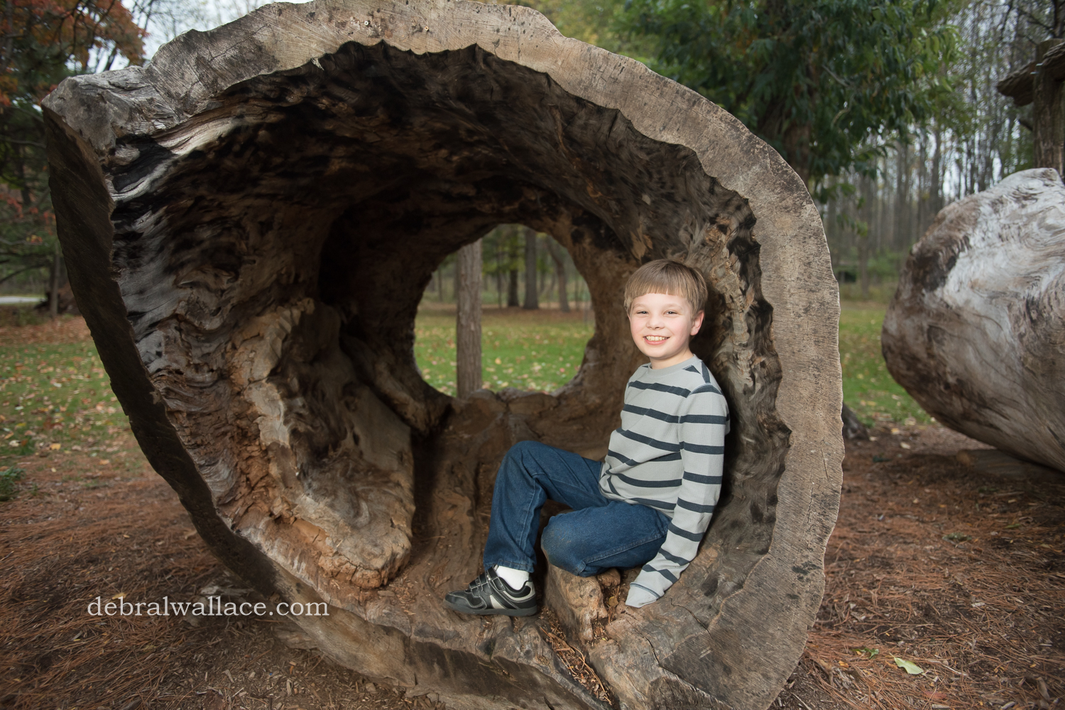 mendon-ponds-family-photography-hollow-log-leaves-brothers-1392