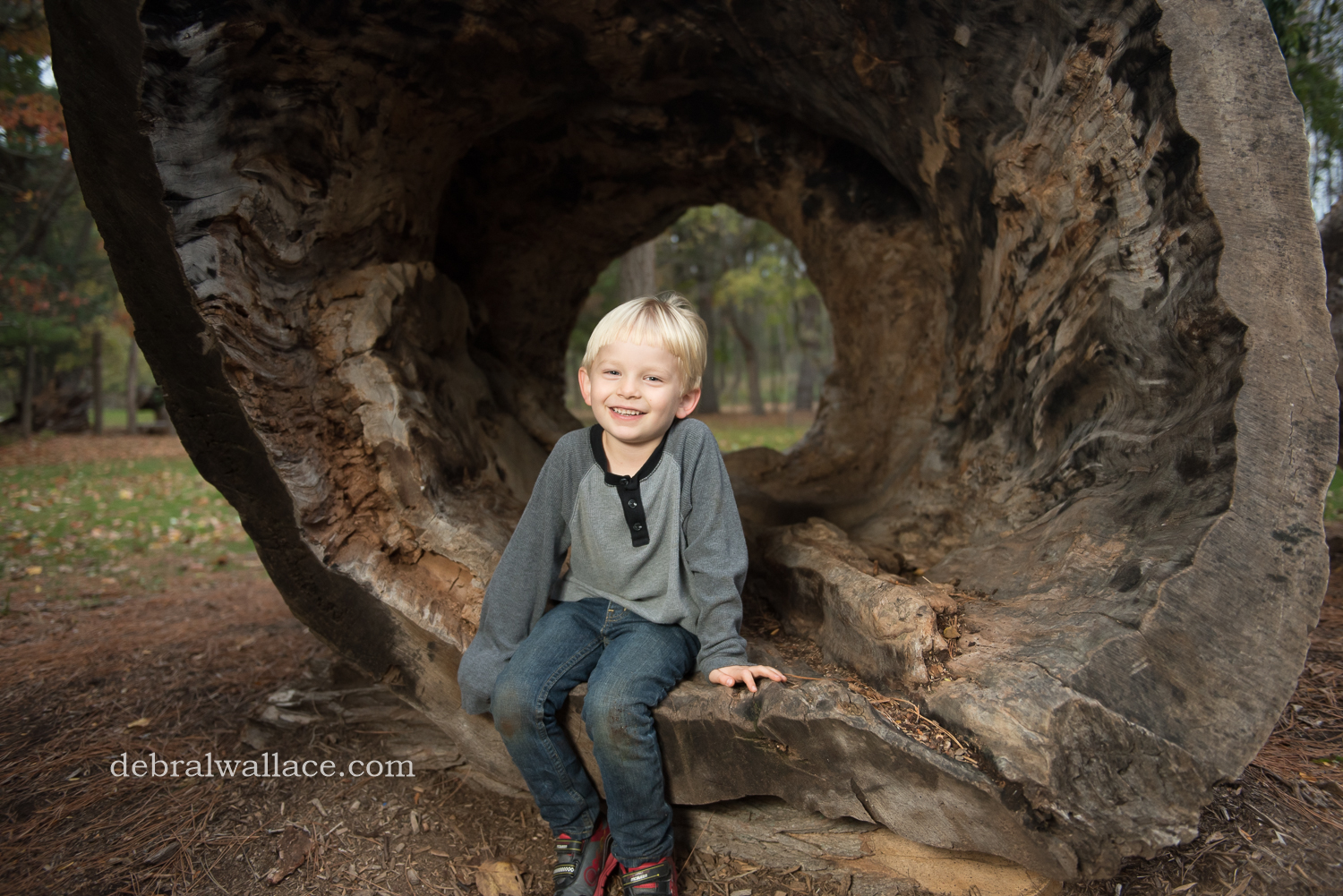 mendon-ponds-family-photography-hollow-log-leaves-brothers-1401