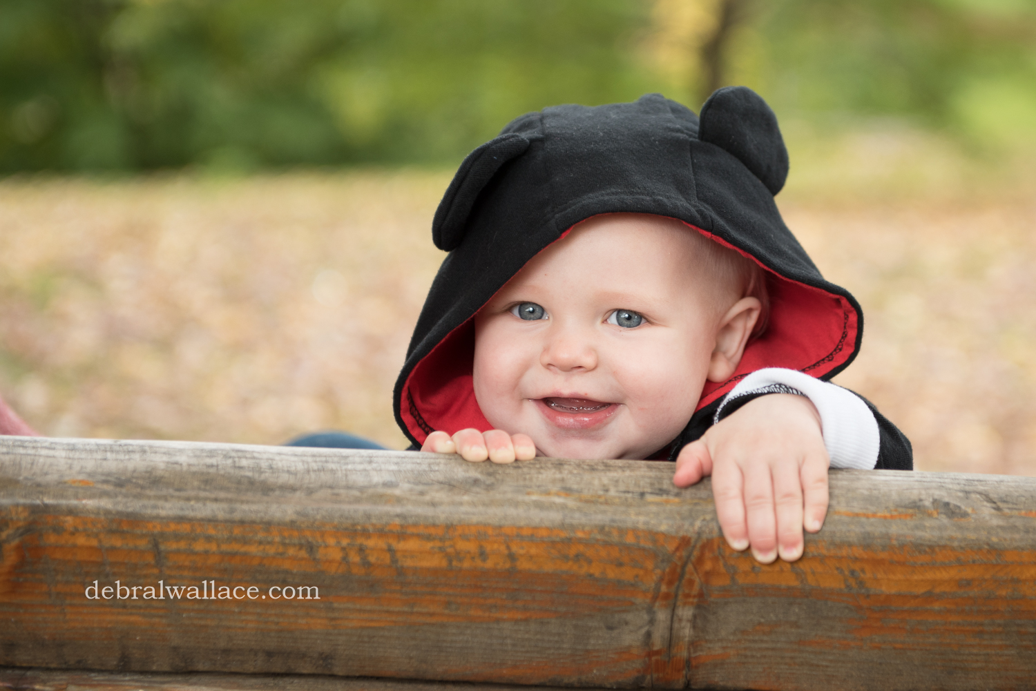 Highland Park Baby Photography